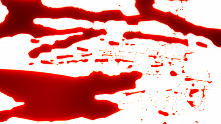 nằm mơ thấy máu đánh con gì